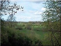 SO8252 : View across fields towards Upper Wick by Andrew King
