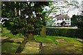 "SJ7870 : ""Red Lion"" public house from Goostrey churchyard by Julian Osley"