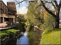 SJ9223 : River Sow, Stafford by David Dixon