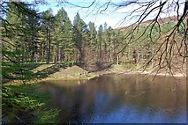 SK1789 : Hope Woodlands : Fairholmes by Ken Bagnall