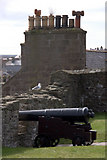 HU4741 : Cannon in Fort Charlotte by Mike Pennington