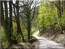 SK2563 : Lees Road towards Stanton Lees by Andrew Hill