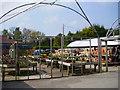 SJ3375 : Burton Nursery & Garden Centre by Eirian Evans