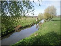 TQ2173 : Beverley Brook in Richmond Park by Marathon