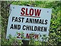 TM1862 : Fast Children by Keith Evans