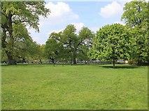 TQ2779 : Hyde Park near the Princess Diana Memorial Fountain by David P Howard