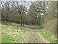 SP9306 : Cholesbury Common by David Purchase