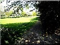NZ3365 : Drewett playing fields by Stanley Howe