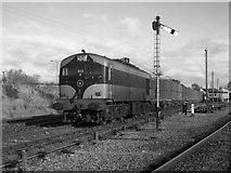 S8513 : Beet train at Wellington Bridge by The Carlisle Kid