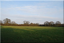 TQ2394 : Countryside in the Dollis Brook Valley by N Chadwick