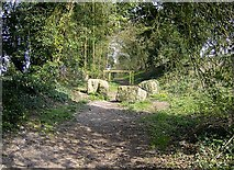 SU5646 : Footpath out of North Waltham by Graham Horn
