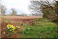 NO0126 : Newly Ploughed Field by Glen Breaden