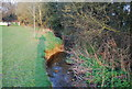 TQ2495 : River cliff, Dollis Brook by N Chadwick