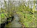 SK0653 : River Hamps at Ford Bridge by Jonathan Billinger