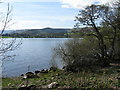 NY4522 : Ullswater shore at Sharrow Bay by M J Richardson