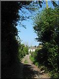 TR3451 : Pixwell Lane by David Anstiss