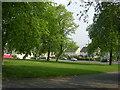 SE1836 : Fir Tree Gardens - Orchard Grove by Betty Longbottom