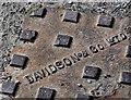 J2357 : Davidson manhole cover, Hillsborough by Albert Bridge
