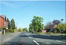 SD5137 : The A6 passes Barton Grange Hotel by Raymond Knapman