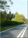 SJ8362 : A534 near Fieldhouse Farm by Anthony Parkes