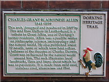 TQ1649 : Charles Allen Plaque by Colin Smith