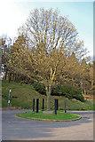 SK1693 : Hope Woodlands : King's Tree by Ken Bagnall
