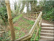 ST2896 : Steps from football pitch to disused canal, Pontnewydd, Cwmbran by Jaggery