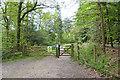 SU2200 : Entrance to Holmsley Inclosure by Mike Smith