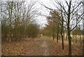 TQ6742 : Footpath across abandoned golf course by N Chadwick