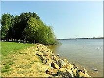 SK9308 : Rutland Water Shore by Tony Atkin