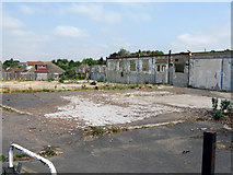 TQ3355 : Caterham:  Derelict site off Westway by Dr Neil Clifton