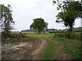 TM3359 : Field Entrance off Button's Road by Adrian Cable