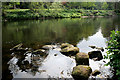 SK3543 : Stones in the River Derwent by David Lally