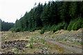 SN7954 : Tywi Forest road near Esgair Ganol, Ceredigion by Roger  Kidd
