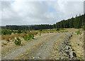 SN7854 : Tywi Forest road on Esgair Ganol, Ceredigion by Roger  Kidd