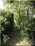TM3464 : Footpath to the B1119 Low Road by Adrian Cable