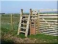 NY4576 : Ladder stile into deerproof enclosure by Oliver Dixon
