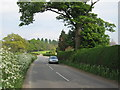 SJ8570 : Pexhill Road, Siddington by Peter Turner