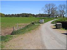 NY6120 : Road at Low Moor by David Brown