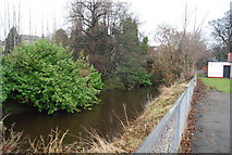NT2273 : Water of Leith by N Chadwick