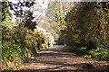 SW7621 : Track to Lanarth by Trevor Harris
