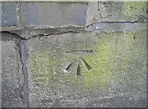 ST7565 : Benchmark on the railway bridge by Neil Owen