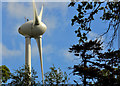 J5079 : Wind turbine, Bangor (1) by Albert Bridge
