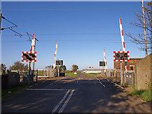 NU0445 : Level Crossing by wfmillar