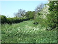 TF8333 : Green lane and footpath north of Syderstone, Norfolk by Richard Humphrey