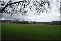NT2273 : Roseburn Public Park by N Chadwick