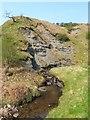 NS4377 : Ballagan Beds in Overtoun Glen by Lairich Rig