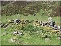 NN9778 : Bothan Dail a' Chruineachd by Richard Webb