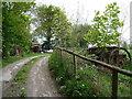 SN1841 : Abandoned farm equipment near Dan-yr-allt Farm by Jeremy Bolwell