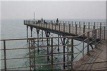 SZ9398 : Bognor Regis Pier by Stephen McKay